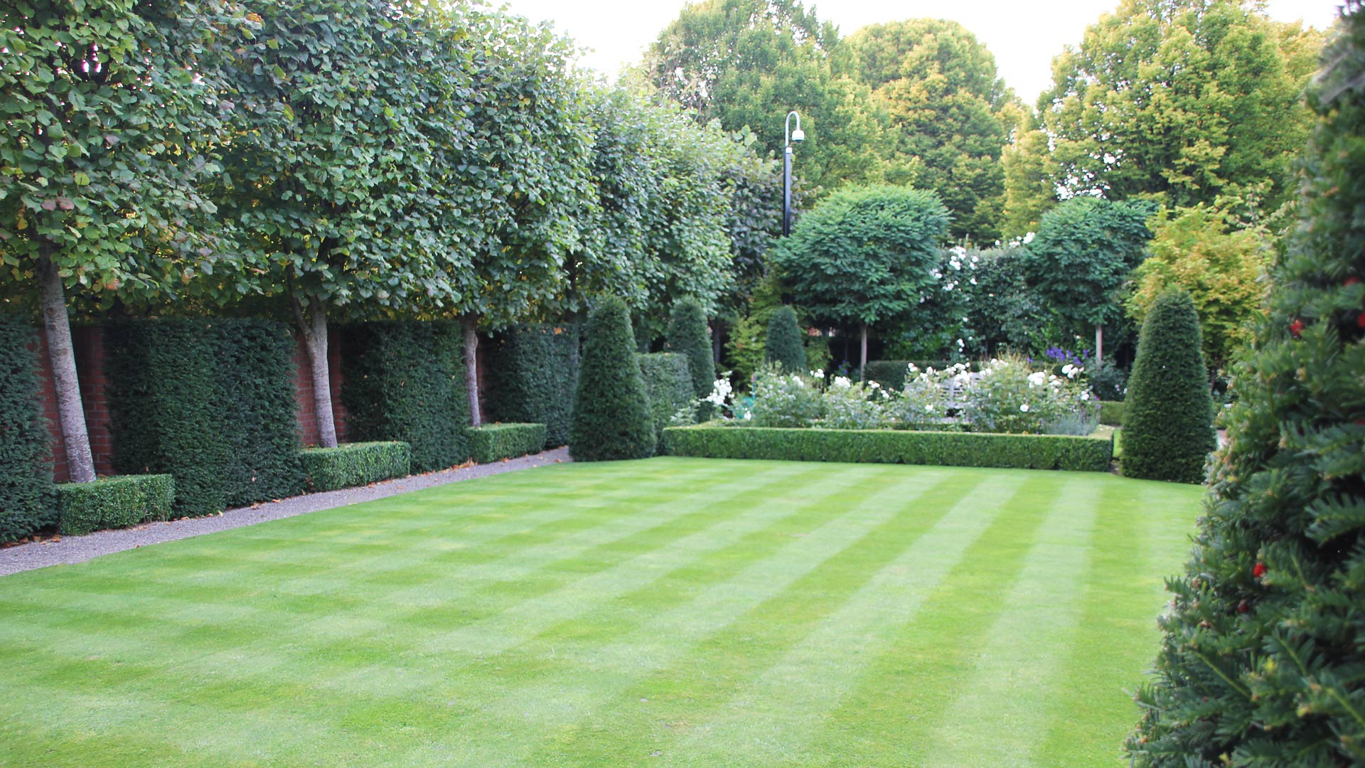 Lawn care service damian costello garden design for Lawn landscape design