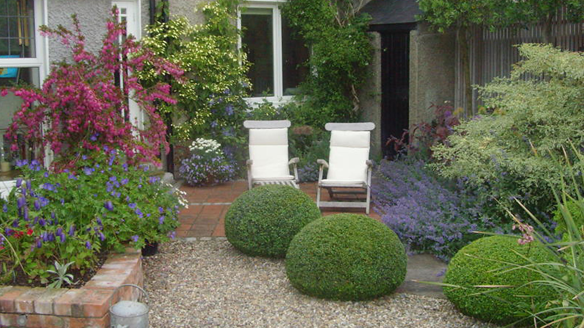 Suburban Backyard Landscape Design : Suburban garden  Damian Costello Garden Design